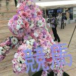 """ビギナーズラック?! 女子大生が競馬場へ""""修行""""に行ってきた【Vol.19】"""